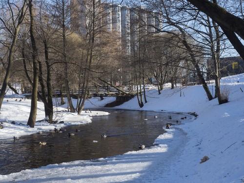 Akerselva-River-VO06189_500